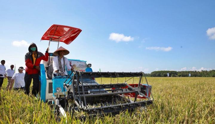 Foto Berita Ini Harapan Menteri Rini pada Petani