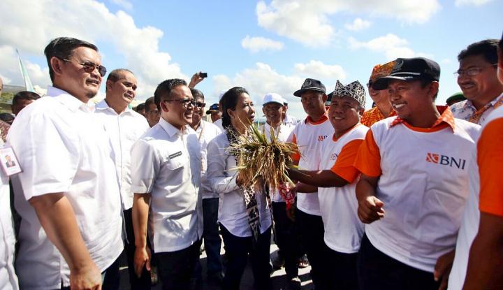 Foto Berita Sergab46 BNI Serap 700 Ton Gabah Petani Jatim