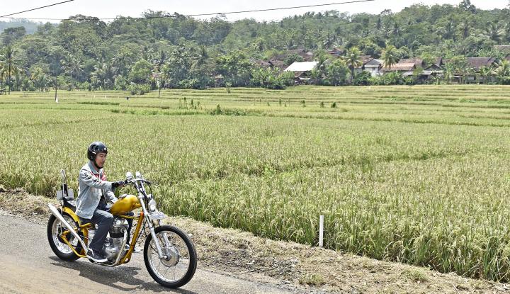 Foto Berita Sawit Selamatkan Ekonomi Indonesia