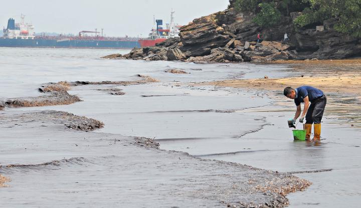 Bocornya Minyak di Teluk Balikpapan Harus Diselesaikan Secara Hukum - Warta Ekonomi