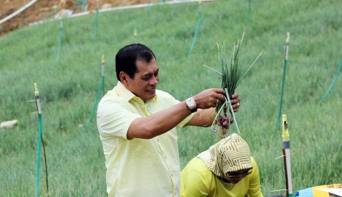 Foto Jurus Nurdin Halid Bikin Sektor Pertanian Jadi Ujung Tombak Perekonomian