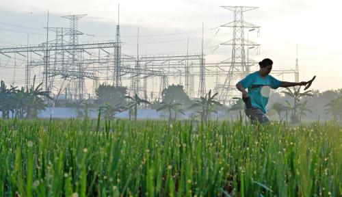 Foto Pacu Investasi Pertanian, 140 Regulasi Dipangkas