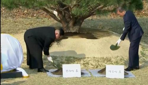 Foto Kim Jong Un-Moon Jae In Tanam 'Pohon Perdamaian' di Perbatasan Korea