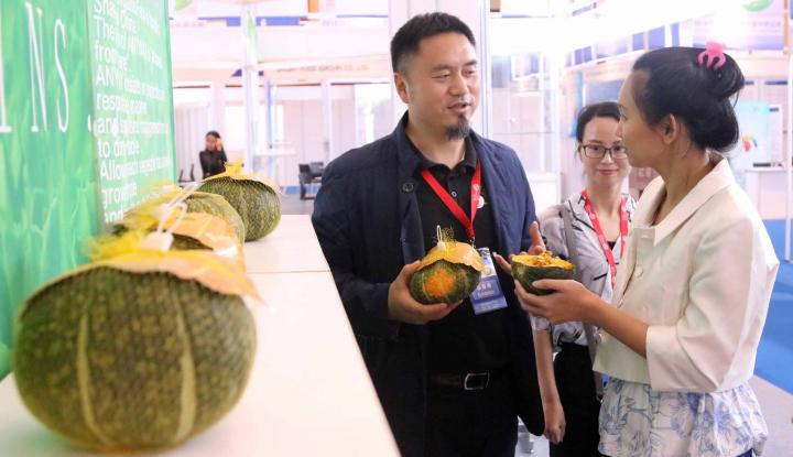 Aneka Ragam Peluang Usaha di Sektor Pertanian - Warta Ekonomi