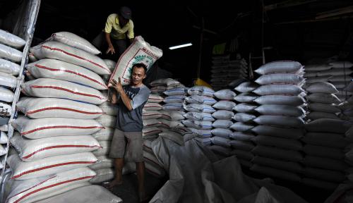 Foto Indef Ingatkan Pemerintah Soal Target Produksi Beras