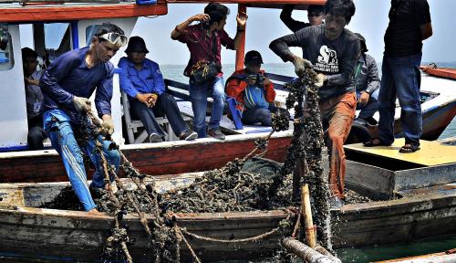 Foto DKP: Cuaca Buruk Bikin Hasil Tangkapan Nelayan Berkurang