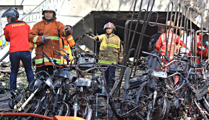 Teror Ular Kobra Sampai ke Jakarta Barat - Warta Ekonomi