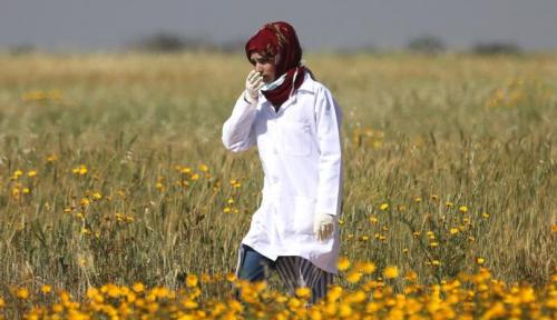 Foto Mengenal Razan al-Najar, Sang 'Malaikat Penjaga' Demonstran Palestina di Gaza