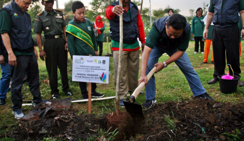 Foto Sambut Hari Lingkungan Hidup Sedunia, PLN Sumbang 32 Ribu Pohon