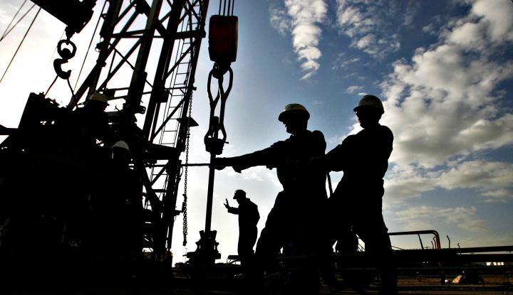 Filda Yusgiantoro Minta Capaian Target Bauran Energi Jadi Perhatian Pemerintah - Warta Ekonomi