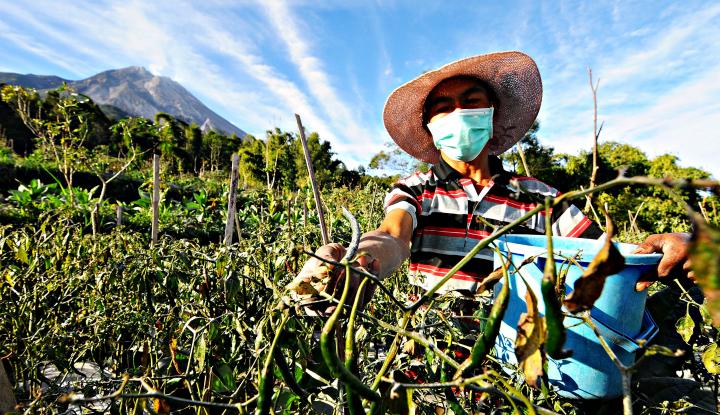 Mampukah Pertanian Indonesia Hadapi Cuaca Ekstrem
