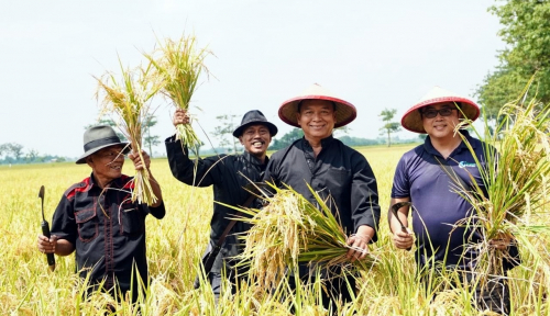 Foto Sejahterakan Petani, Kang Hasan Dukung Digitalisasi Pertanian Jokowi
