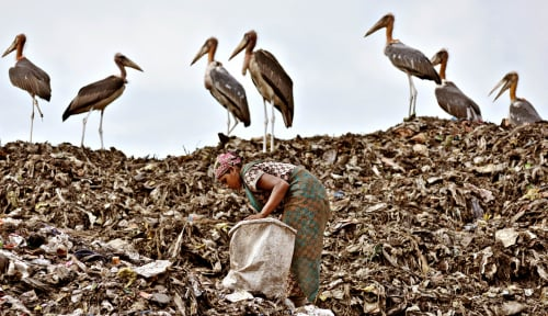 Foto Greenpeace Temukan 700 Merek Sampah Plastik di Pantai