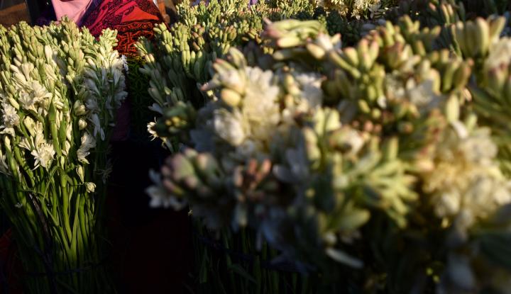 Foto Berita Lebaran, Usaha Pot Bunga Raup Untung Rp3 Juta Per Hari