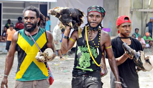 Foto Komnas HAM Pastikan Aksi Kekerasan di Nduga Bukan Kerjaan OPM