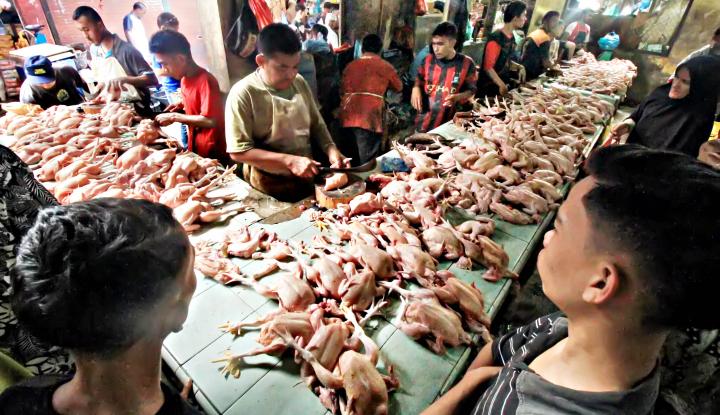 Foto Berita Kata Kementan Soal Naiknya Harga Daging Ayam