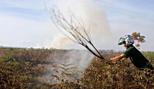 Foto Awas, Karhutla di Sejumlah Wilayah Bakal Meningkat