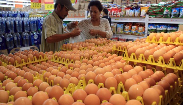 Foto Berita Harga Telur Melambung, Ini Pemicunya