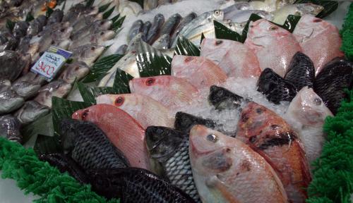 Foto KKP Bangun Kesadaran Internasional Terhadap Kualitas Produk Perikanan Indonesia