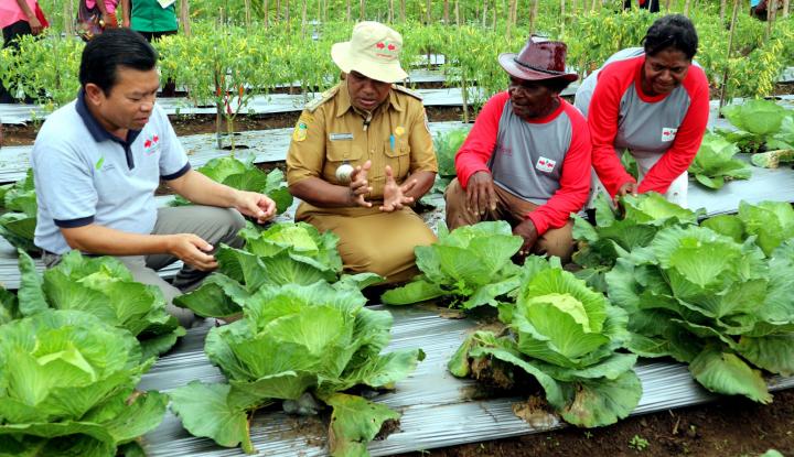 Seberapa Jauh Pemanfaatan Teknologi dalam Pertanian? Ternyata Cukup.... - Warta Ekonomi