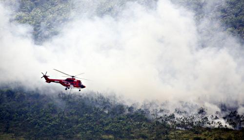 Foto Padamkan Api, APP Sinar Mas Kerahkan Helikopter untuk Water Bombing