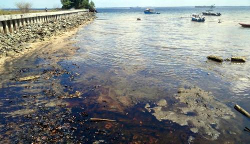 Foto Dua Tumpahan Minyak Kembali Ditemukan di Pantai Balikpapan