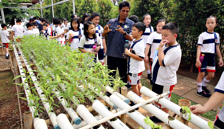 Foto Berita Paramount Land Gelar Program Green Schools
