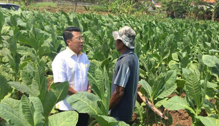Peduli Nasib Petani Tembakau, Misbakhun Terus Perjuangkan RUU Pertembakauan - Warta Ekonomi