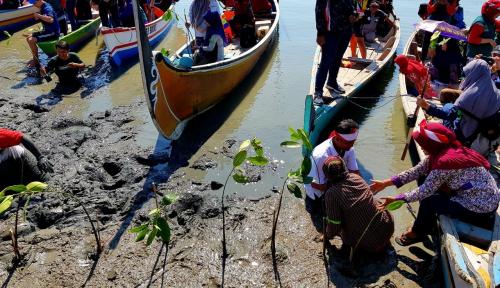 Foto PLN Kembali Tanam 100 Pohon Bakau di Taman Mangrove Surabaya