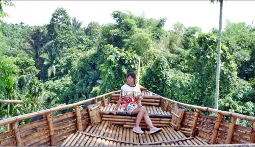 Foto Jadi Ikon Wisata, Tiga Ribu Warga Medan Padati Sun Flower Garden