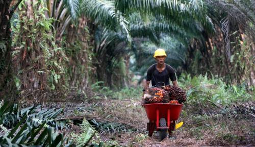 Foto Kemendag Genjot Ekspor Produk Organik ke Hongkong