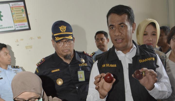Foto Berita Bolak-balik Mentan Janjikan Indonesia Swasembada Pangan, Kok Masih Impor?