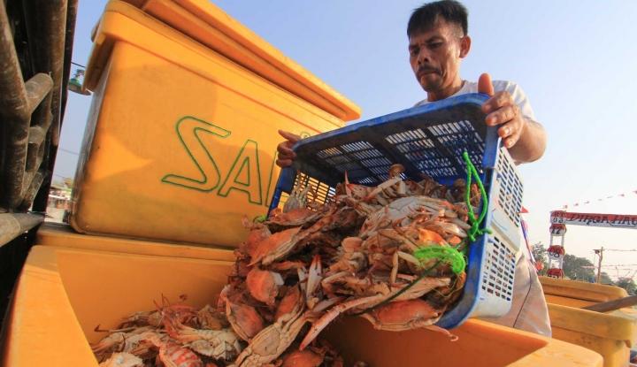 Target Ekspor US$6,47 M, KKP Genjot Rajungan Demak - Warta Ekonomi
