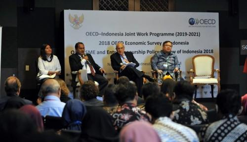 Foto OECD Beri Sejumlah Rekomendasi Pengembangan UKM Indonesia