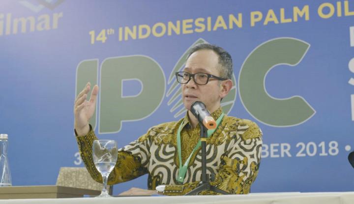 Foto Berita Industri Sawit Tambah Gede Bikin SDGs Cepat Tercapai