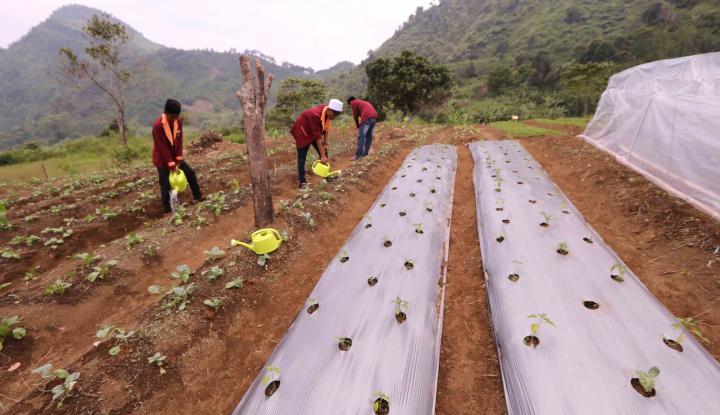 Bupati, Ayo Wujudkan Banyak Desa yang Mandiri - Warta Ekonomi
