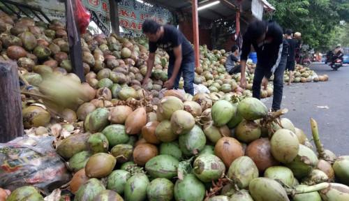 Foto Sulawesi Utara Serius Tingkatkan Produktivitas Komoditi Kelapa