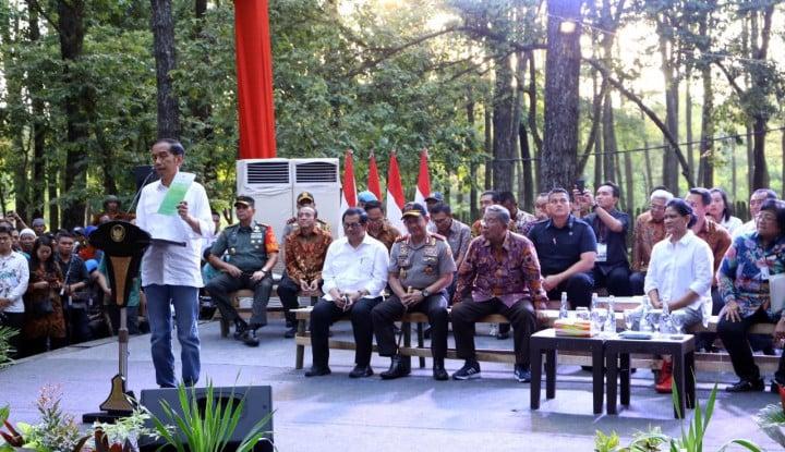 Gara-Gara Harga Sawit Turun, Jokowi Sarankan Petani Tanam Jengkol - Warta Ekonomi