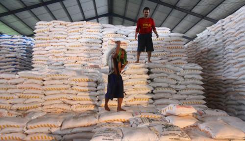 Foto Stok Pupuk Subsidi 3 Bulan ke Depan Dipastikan Aman