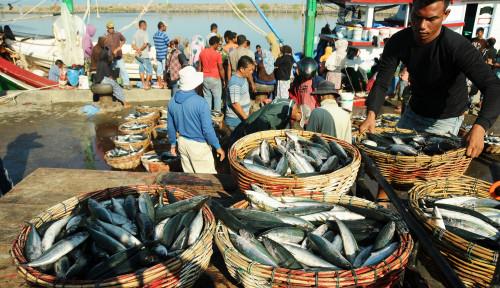 Foto Gelombang Tinggi Sebabkan Harga Ikan Naik