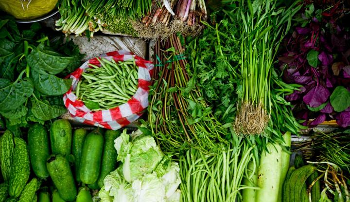 Foto Berita Petani Keluhkan Rendahnya Harga Jual Sayur Mayur