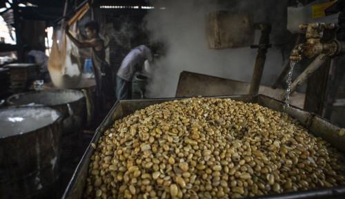 Foto Pengaruh Iklim Terhadap Tingkat Produktivitas