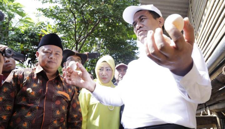 Foto Berita Mencicipi Telur Hasil Ayam Bantuan Program BEKERJA