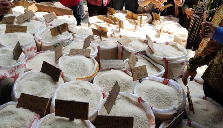 Impor Beras Tahun 2018 Jadi yang Tertinggi Kedua Setelah 2011, Kata Indef