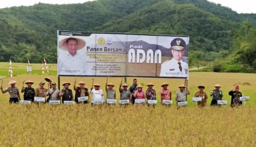 Foto Kaltara Ekspor Puluhan Ton Beras ke Malaysia dan Brunei