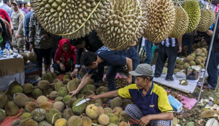 Keanehan Durian di Aceh, Tak Lagi Manis Sejak Peristiwa...