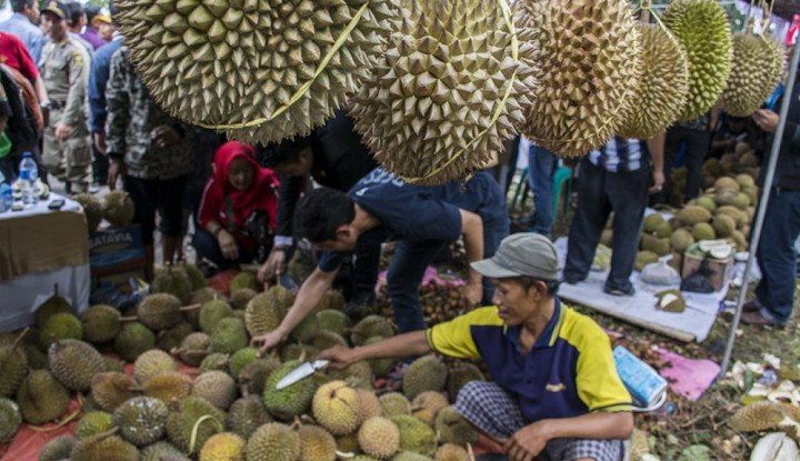 Foto Berita Caleg PKB Sebut Durian Natuna Bisa Go International