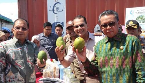 Foto Gubernur Sulsel Apresiasi Kinerja Kementan, 11 Komoditas Pertanian Diekspor