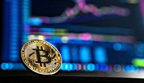 Naik Daun, Bitcoin Diprediksi Naik 100 Kali Lipat hingga Sentuh Miliaran