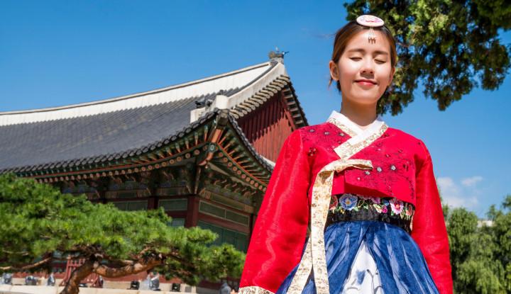 10 Destinasi Wisata Musim Semi di Jepang dan Korsel yang Tak Menguras Kantong - Warta Ekonomi